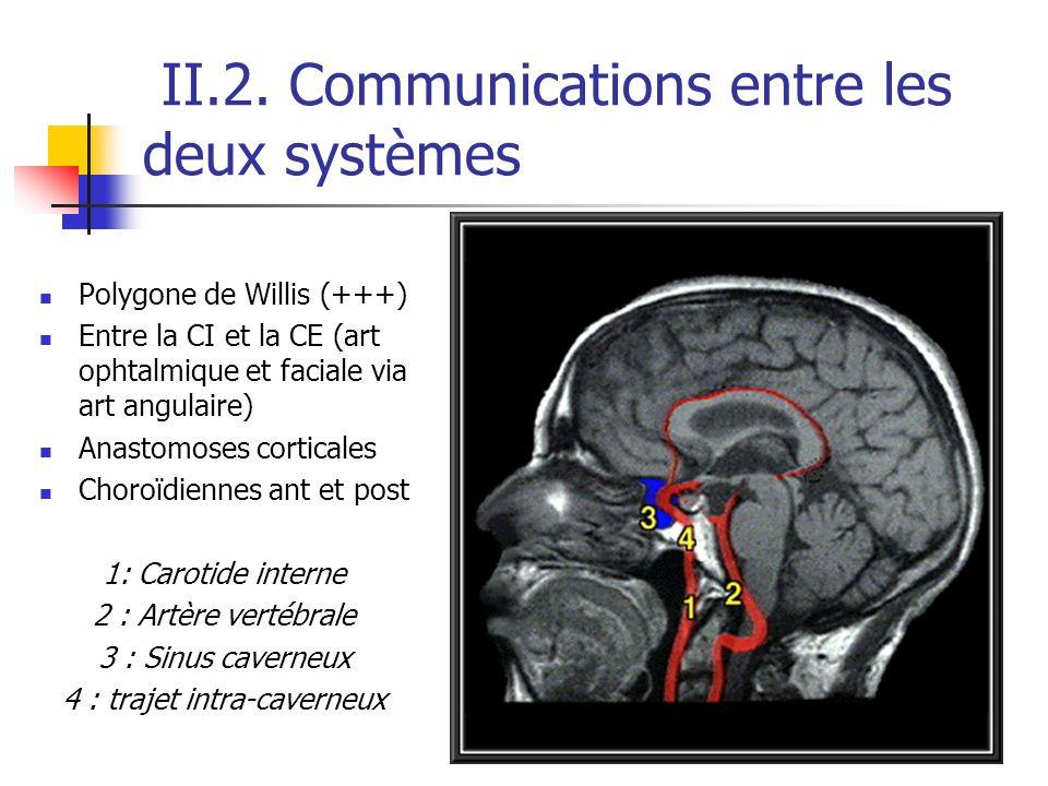 II.2. Communications entre les deux systèmes Polygone de Willis (+++) Entre la CI et la CE (art ophtalmique et faciale via art angulaire) Anastomoses