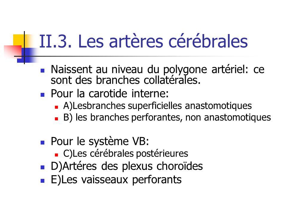 II.3. Les artères cérébrales Naissent au niveau du polygone artériel: ce sont des branches collatérales. Pour la carotide interne: A)Lesbranches super