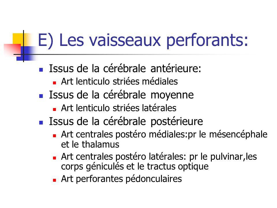 E) Les vaisseaux perforants: Issus de la cérébrale antérieure: Art lenticulo striées médiales Issus de la cérébrale moyenne Art lenticulo striées laté