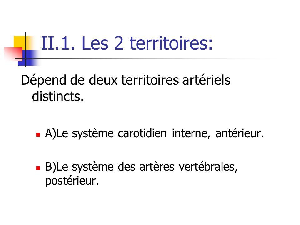 II.1. Les 2 territoires: Dépend de deux territoires artériels distincts. A)Le système carotidien interne, antérieur. B)Le système des artères vertébra