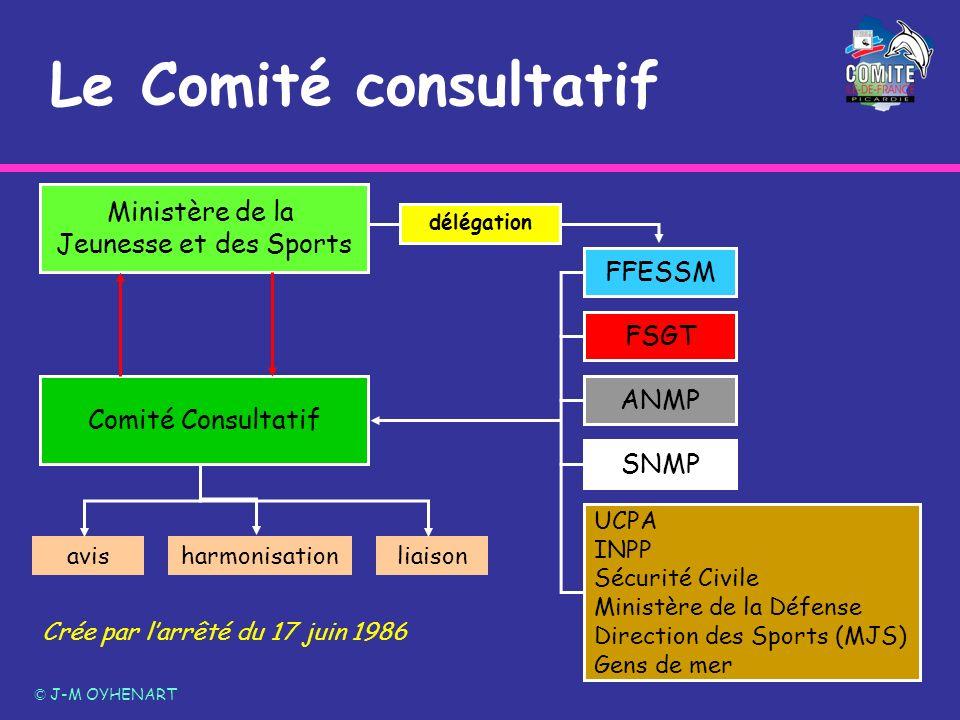 Le Comité consultatif © J-M OYHENART Ministère de la Jeunesse et des Sports Comité Consultatif FSGT ANMP SNMP UCPA INPP Sécurité Civile Ministère de l