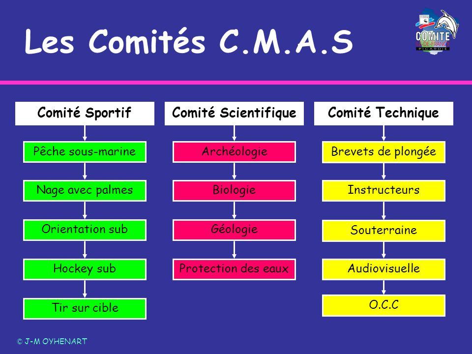 Les Comités C.M.A.S © J-M OYHENART Comité ScientifiqueComité SportifComité Technique Archéologie Biologie Géologie Protection des eaux Brevets de plon