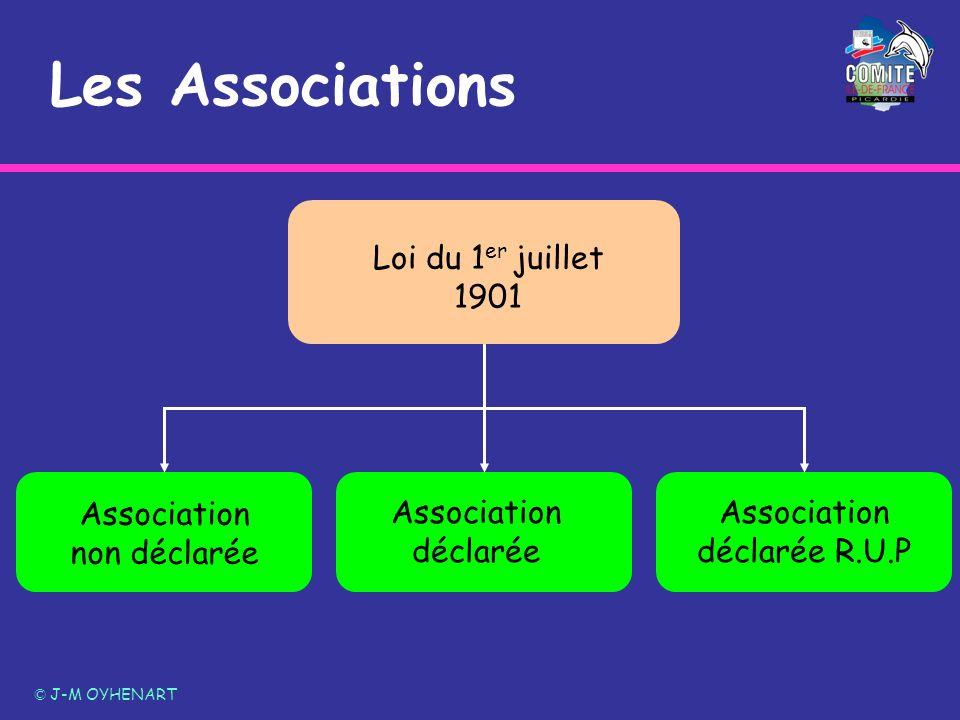 LES ASSOCIATIONS NON DECLAREES –Elles sont prévues par la loi de 1901 –Au sens de la loi, ce type dassociation nest soumise ni à déclaration, ni à autorisation.