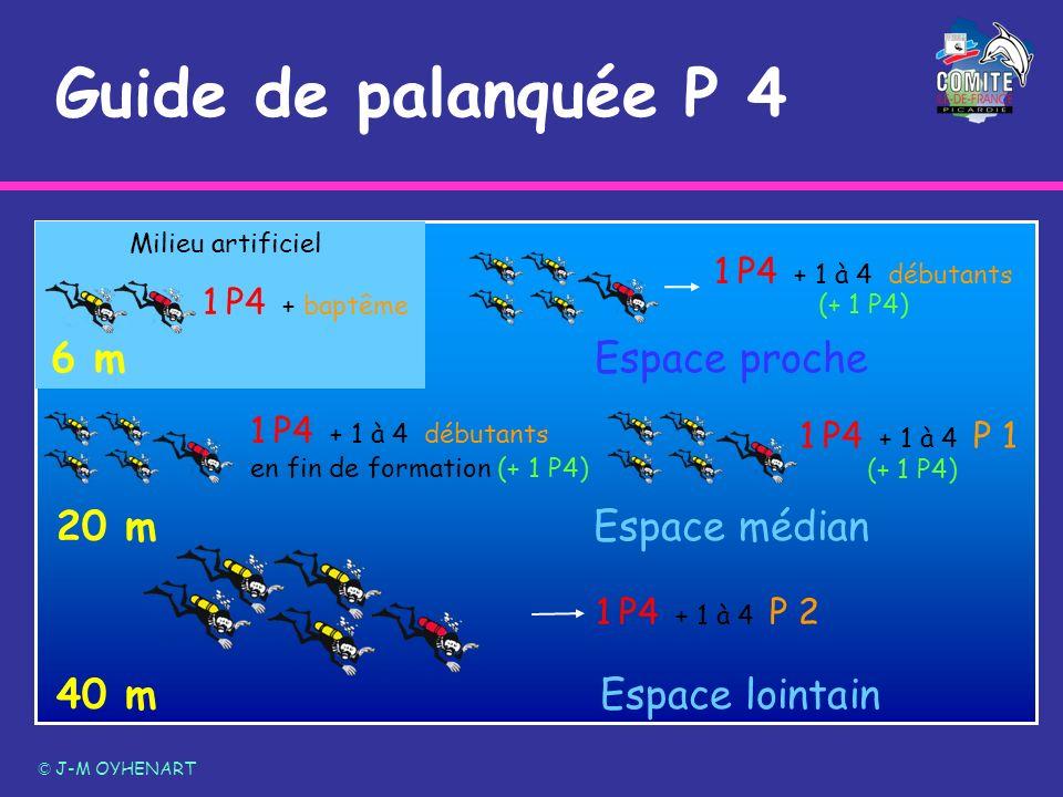 6 m Milieu artificiel Guide de palanquée P 4 © J-M OYHENART Espace proche 20 mEspace médian 40 mEspace lointain 1 P4 + 1 à 4 P 1 (+ 1 P4) 1 P4 + 1 à 4
