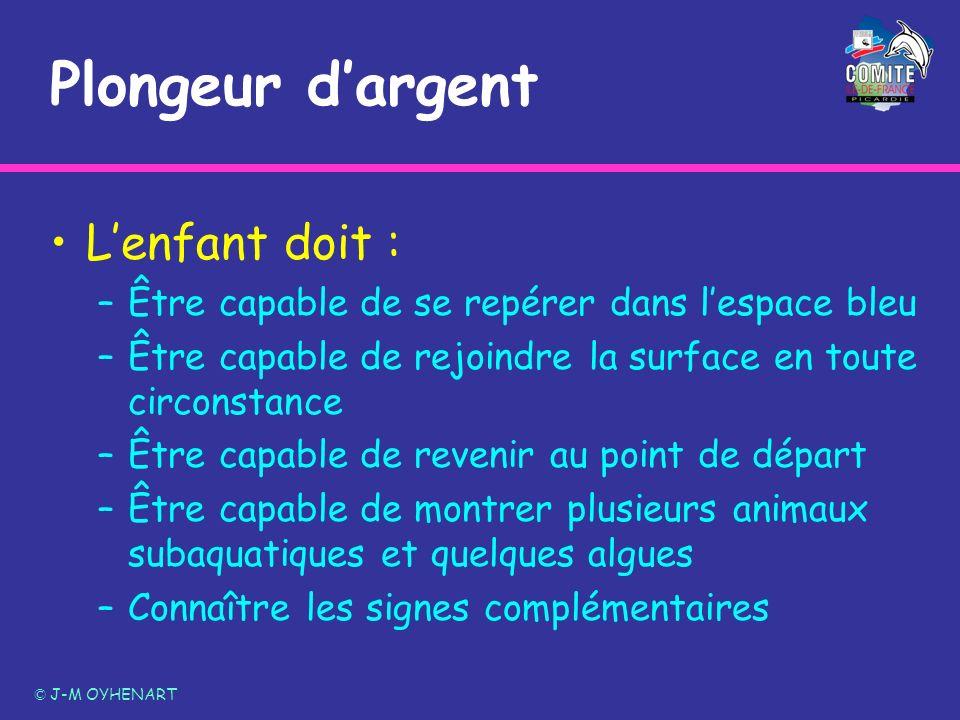 Plongeur dargent Lenfant doit : –Être capable de se repérer dans lespace bleu –Être capable de rejoindre la surface en toute circonstance –Être capabl