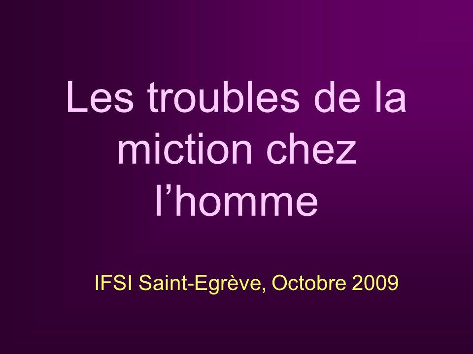 Les troubles de la miction chez lhomme IFSI Saint-Egrève, Octobre 2009