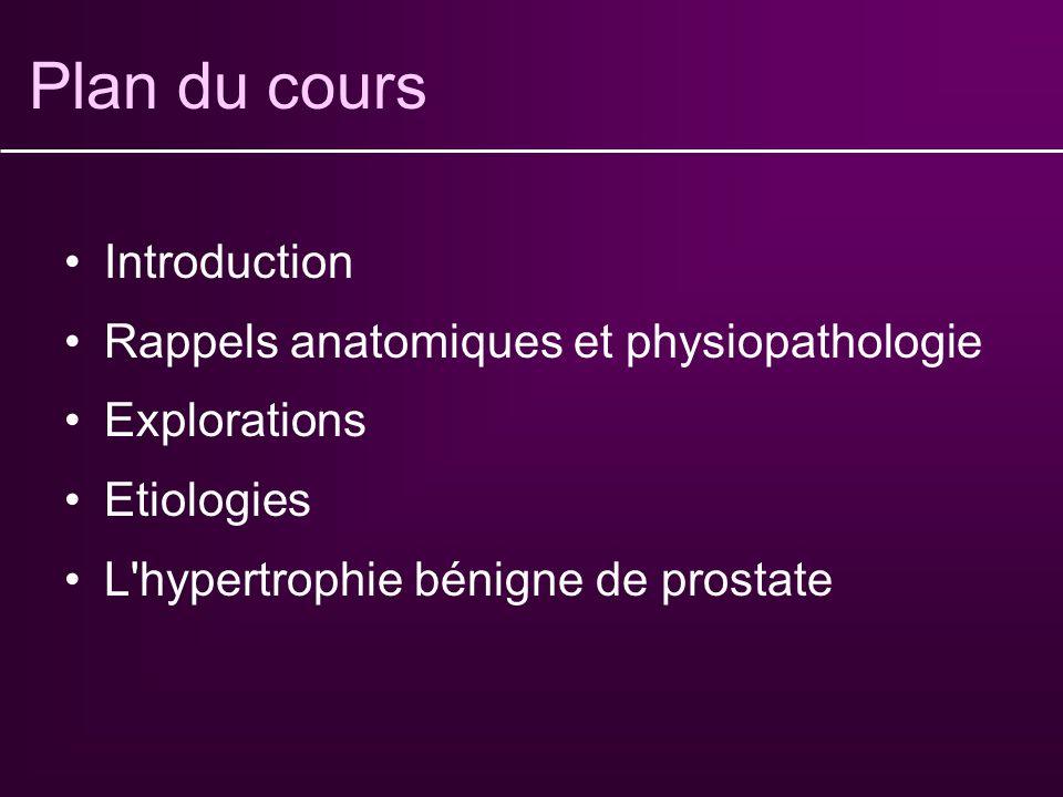 Plan du cours Introduction Rappels anatomiques et physiopathologie Explorations Etiologies L hypertrophie bénigne de prostate