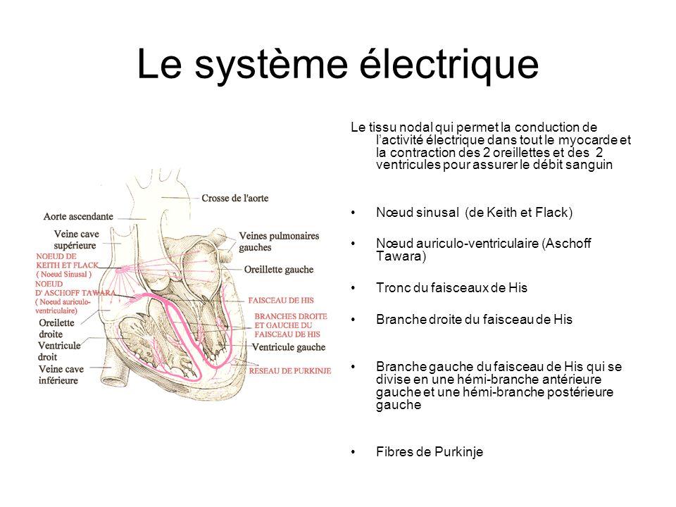 Le système électrique Le tissu nodal qui permet la conduction de lactivité électrique dans tout le myocarde et la contraction des 2 oreillettes et des