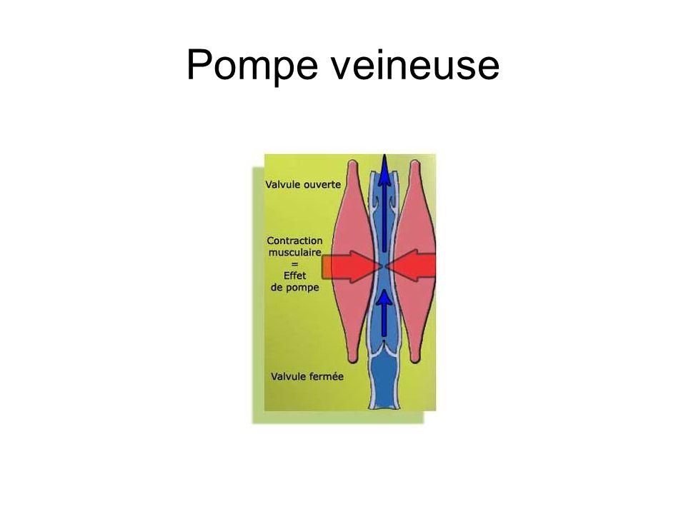 Pompe veineuse
