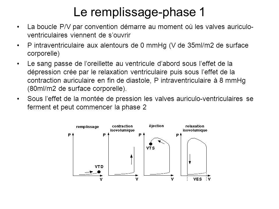 Le remplissage-phase 1 La boucle P/V par convention démarre au moment où les valves auriculo- ventriculaires viennent de souvrir P intraventriculaire