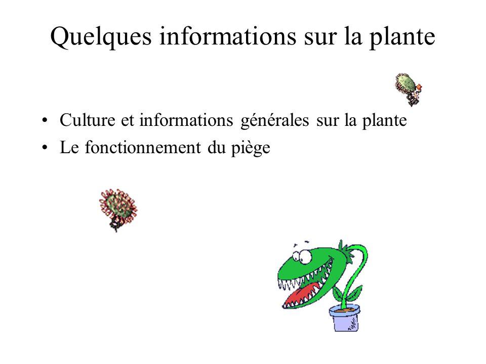 Quelques informations sur la plante Culture et informations générales sur la plante Le fonctionnement du piège