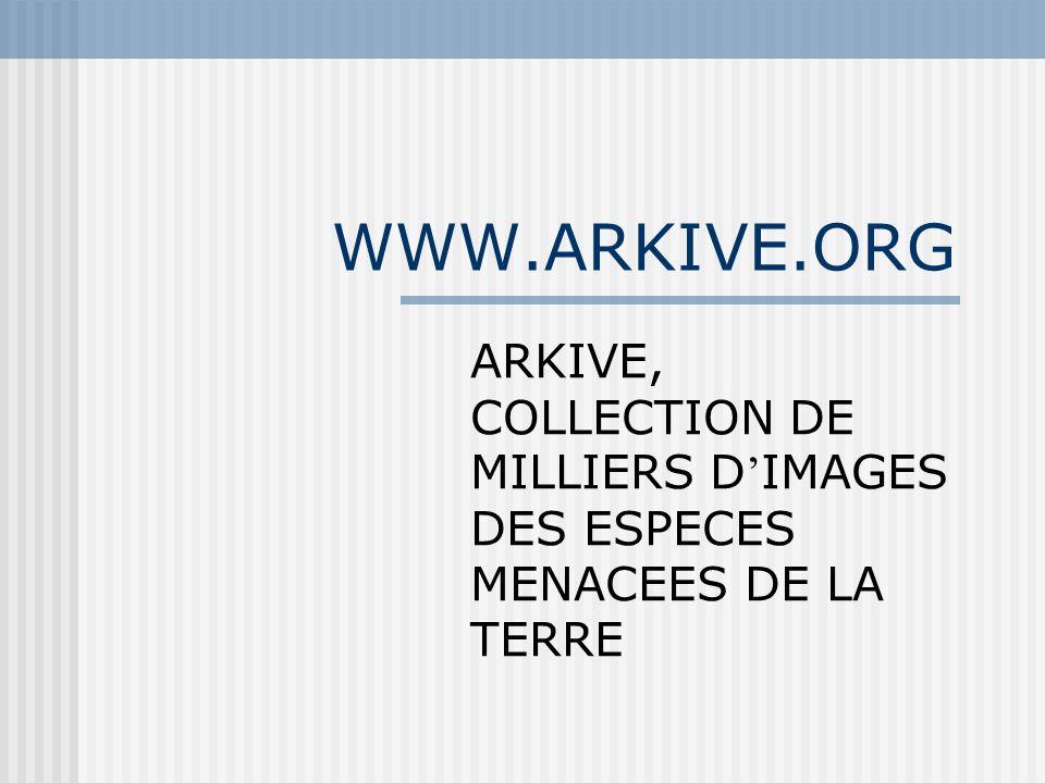 WWW.ARKIVE.ORG ARKIVE, COLLECTION DE MILLIERS D IMAGES DES ESPECES MENACEES DE LA TERRE