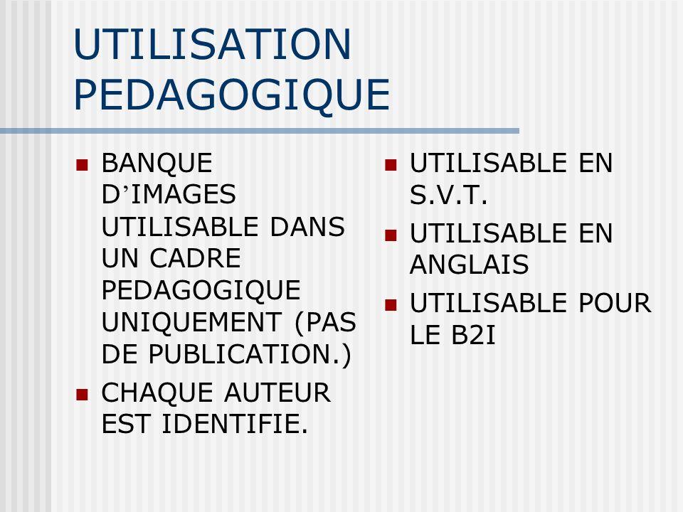 UTILISATION PEDAGOGIQUE BANQUE D IMAGES UTILISABLE DANS UN CADRE PEDAGOGIQUE UNIQUEMENT (PAS DE PUBLICATION.) CHAQUE AUTEUR EST IDENTIFIE. UTILISABLE
