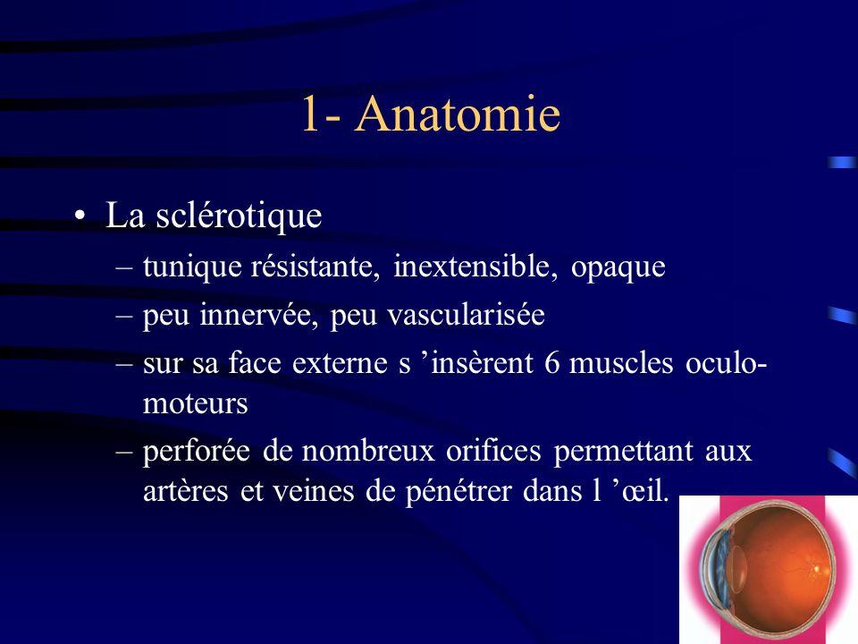 1- Anatomie La sclérotique –tunique résistante, inextensible, opaque –peu innervée, peu vascularisée –sur sa face externe s insèrent 6 muscles oculo-