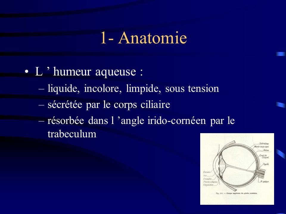 1- Anatomie L humeur aqueuse : –liquide, incolore, limpide, sous tension –sécrétée par le corps ciliaire –résorbée dans l angle irido-cornéen par le t