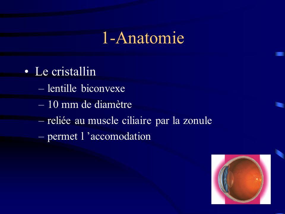 1-Anatomie Le cristallin –lentille biconvexe –10 mm de diamètre –reliée au muscle ciliaire par la zonule –permet l accomodation