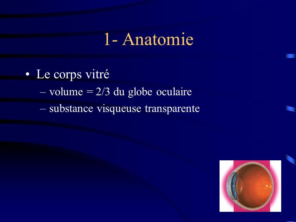 1- Anatomie Le corps vitré –volume = 2/3 du globe oculaire –substance visqueuse transparente
