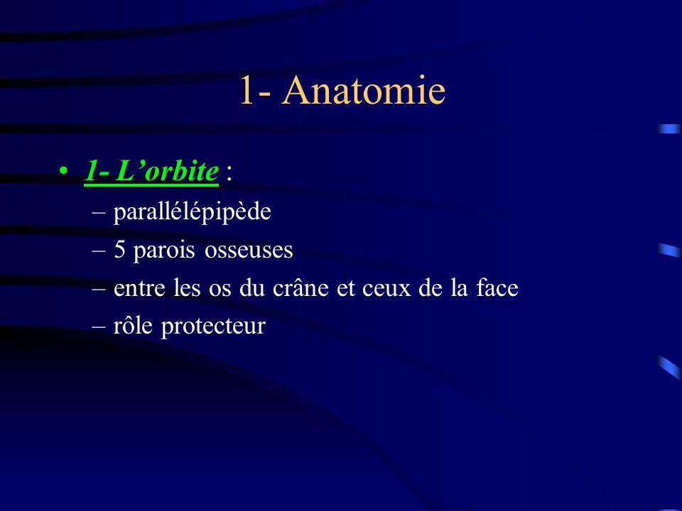 1- Anatomie 1- Lorbite : –parallélépipède –5 parois osseuses –entre les os du crâne et ceux de la face –rôle protecteur