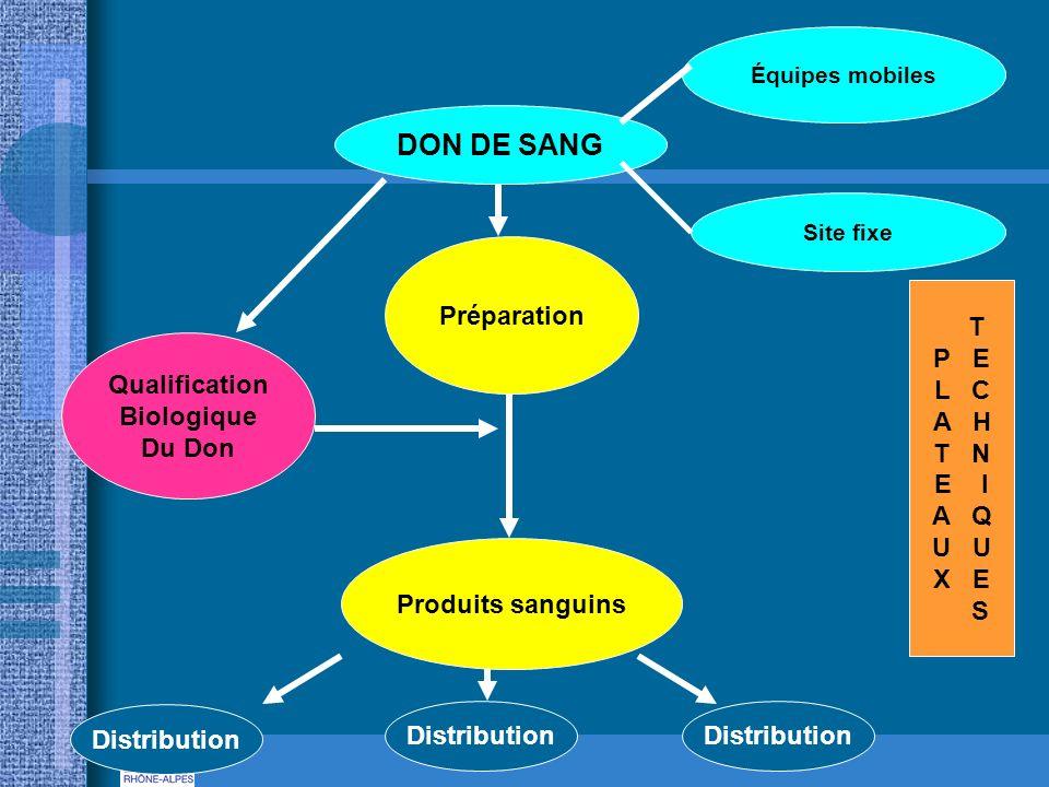 DON DE SANG Équipes mobiles Site fixe Préparation Qualification Biologique Du Don Produits sanguins Distribution T P E L C A H T N E I A Q U X E S