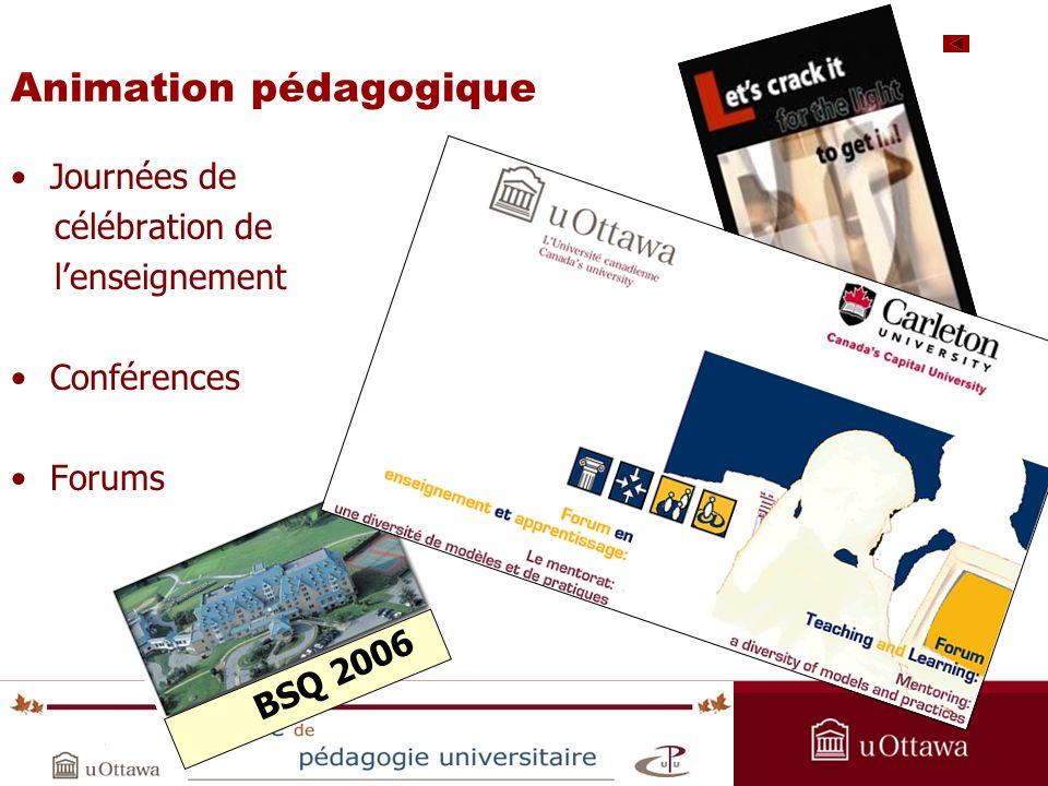 OPAS Summer Institute 2005 Animation pédagogique Journées de célébration de lenseignement Conférences Forums BSQ 2006