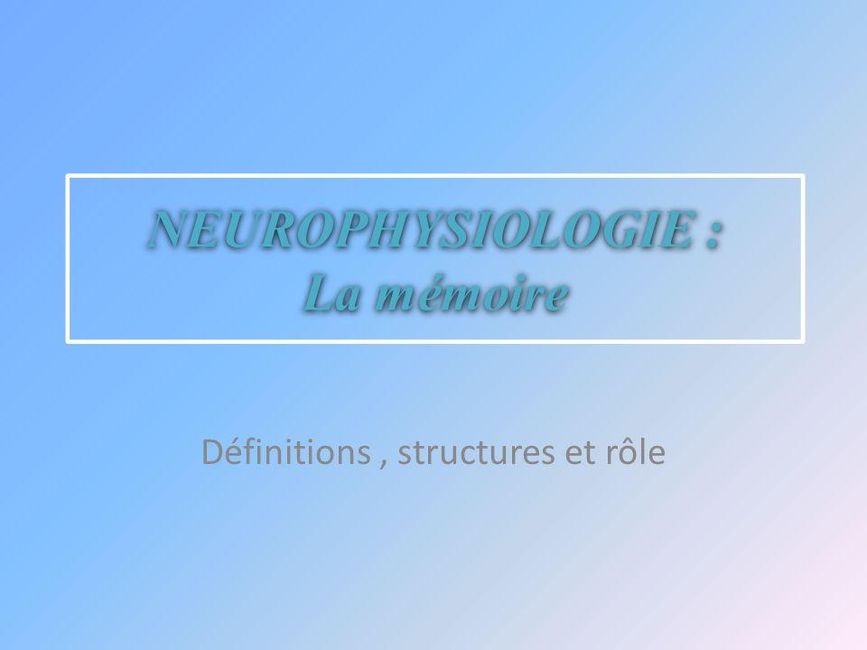 NEUROPHYSIOLOGIE : La mémoire Définitions, structures et rôle