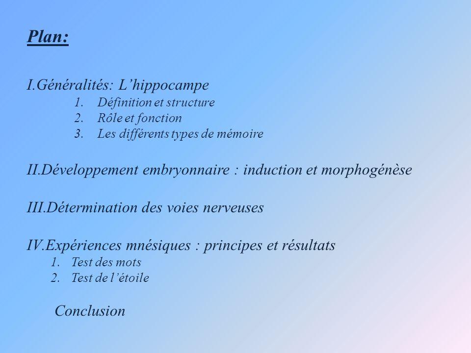 Plan: I.Généralités: Lhippocampe 1.Définition et structure 2.Rôle et fonction 3.Les différents types de mémoire II.Développement embryonnaire : induct