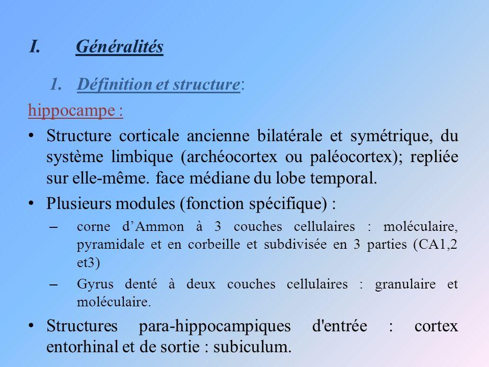 I.Généralités 1.Définition et structure : hippocampe : Structure corticale ancienne bilatérale et symétrique, du système limbique (archéocortex ou pal