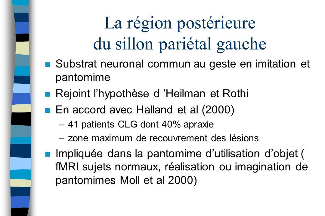 La région postérieure du sillon pariétal gauche n Substrat neuronal commun au geste en imitation et pantomime n Rejoint lhypothèse d Heilman et Rothi