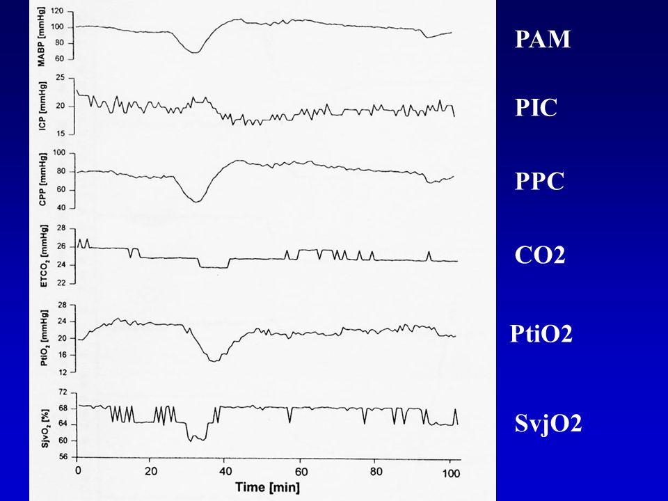 PAM PIC PPC CO2 PtiO2 SvjO2