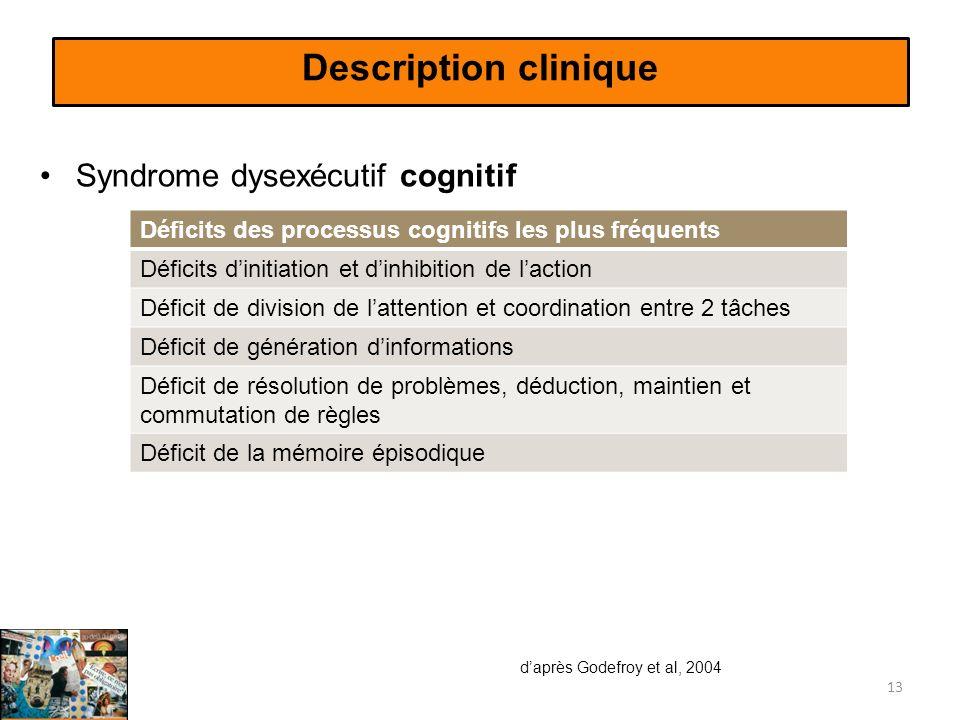 Description clinique Syndrome dysexécutif cognitif 13 Déficits des processus cognitifs les plus fréquents Déficits dinitiation et dinhibition de lacti