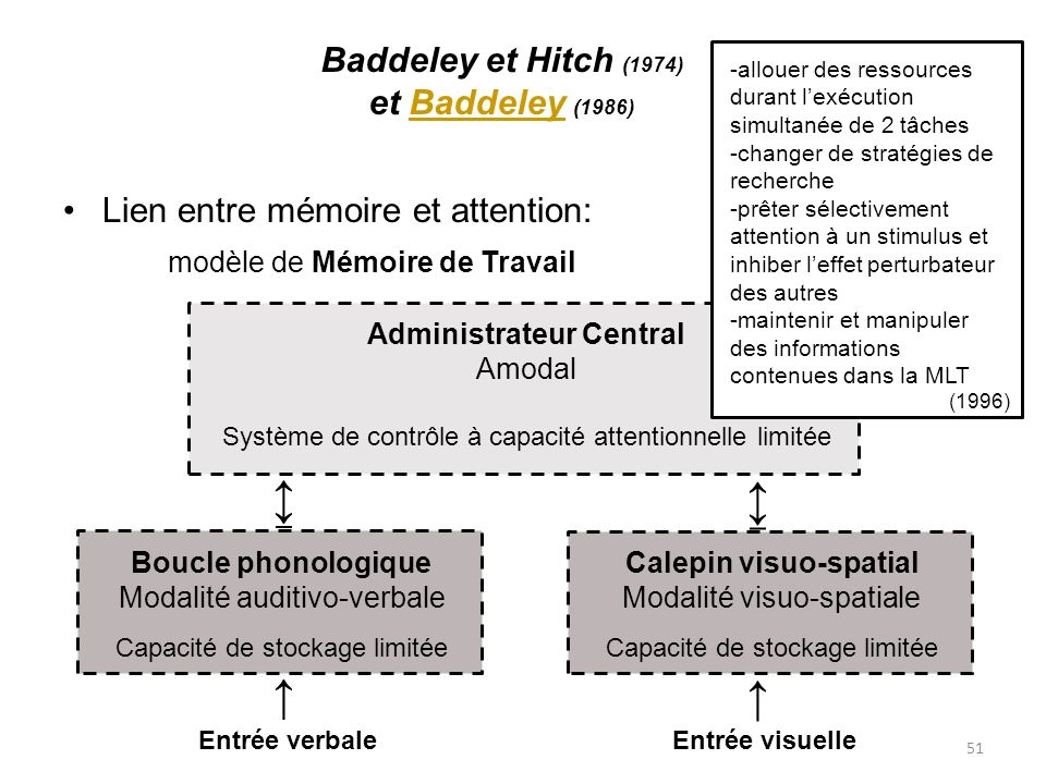 51 Baddeley et Hitch (1974) et Baddeley (1986)Baddeley Lien entre mémoire et attention: modèle de Mémoire de Travail Administrateur Central Amodal Sys
