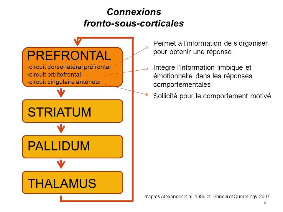8 PREFRONTAL -circuit dorso-latéral préfrontal -circuit orbitofrontal -circuit cingulaire antérieur STRIATUM PALLIDUM THALAMUS Connexions fronto-sous-corticales daprès Alexander et al, 1986 et Bonelli et Cummings, 2007 Permet à linformation de sorganiser pour obtenir une réponse Intègre linformation limbique et émotionnelle dans les réponses comportementales Sollicité pour le comportement motivé