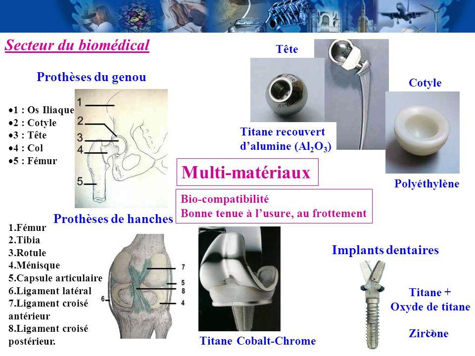 13 Secteur du biomédical 1 : Os Iliaque 2 : Cotyle 3 : Tête 4 : Col 5 : Fémur Prothèses de hanches Prothèses du genou Implants dentaires Tête Cotyle P