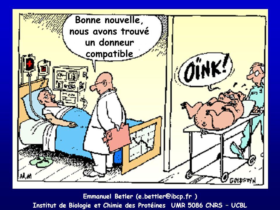 Bonne nouvelle, nous avons trouvé un donneur compatible Emmanuel Betler (e.bettler@ibcp.fr ) Institut de Biologie et Chimie des Protéines UMR 5086 CNR