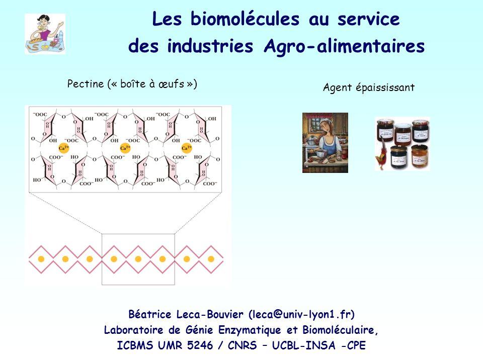 Les biomolécules au service des industries Agro-alimentaires Pectine (« boîte à œufs ») Agent épaississant Béatrice Leca-Bouvier (leca@univ-lyon1.fr)