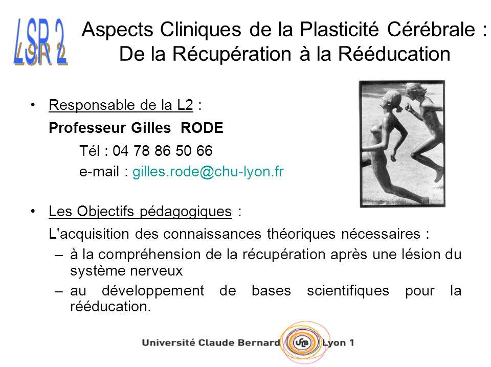 Aspects Cliniques de la Plasticité Cérébrale : De la Récupération à la Rééducation Responsable de la L2 : Professeur Gilles RODE Tél : 04 78 86 50 66
