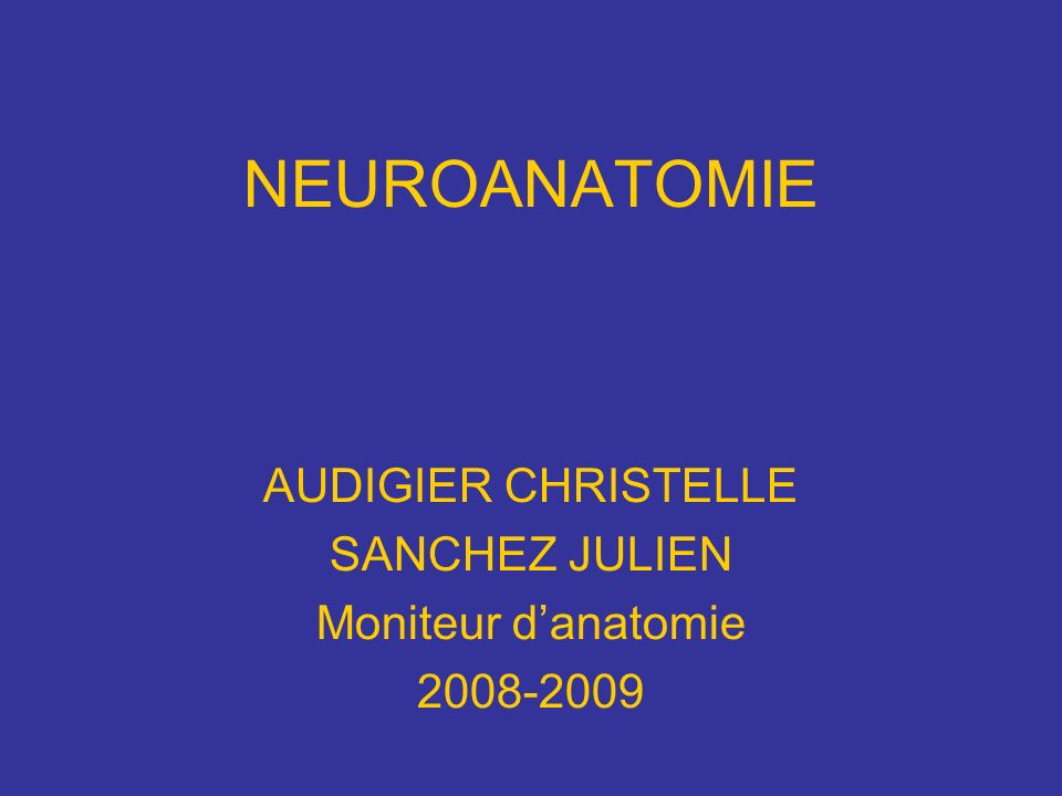 NEUROANATOMIE AUDIGIER CHRISTELLE SANCHEZ JULIEN Moniteur danatomie 2008-2009