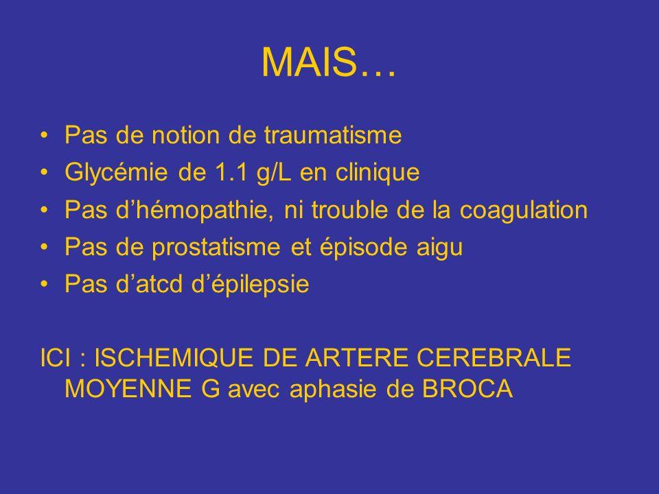 MAIS… Pas de notion de traumatisme Glycémie de 1.1 g/L en clinique Pas dhémopathie, ni trouble de la coagulation Pas de prostatisme et épisode aigu Pa