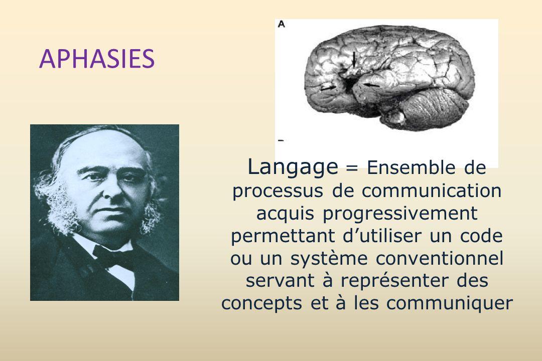 APHASIES Langage = Ensemble de processus de communication acquis progressivement permettant dutiliser un code ou un système conventionnel servant à re