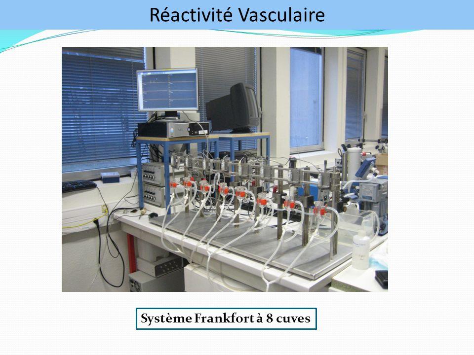 Réactivité Vasculaire Système Frankfort à 8 cuves