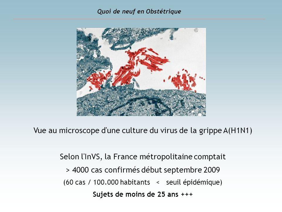 Quoi de neuf en Obstétrique Vue au microscope d'une culture du virus de la grippe A(H1N1) Selon l'InVS, la France métropolitaine comptait > 4000 cas c