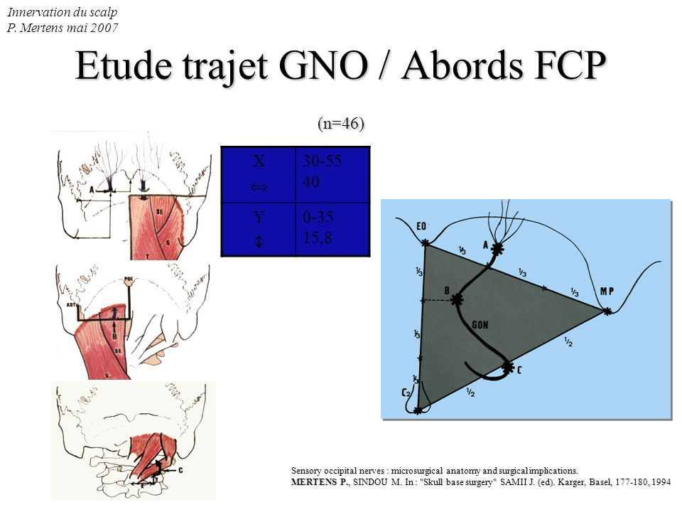 Innervation du scalp P. Mertens mai 2007 Etude trajet GNO / Abords FCP (n=46) Sensory occipital nerves : microsurgical anatomy and surgical implicatio