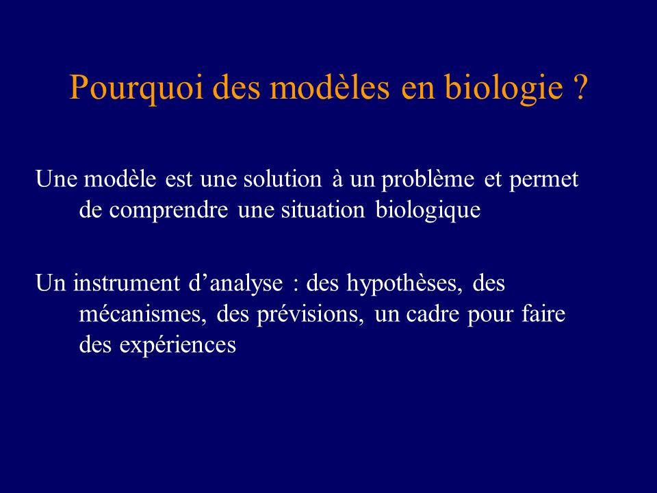 Pourquoi des modèles en biologie ? Une modèle est une solution à un problème et permet de comprendre une situation biologique Un instrument danalyse :