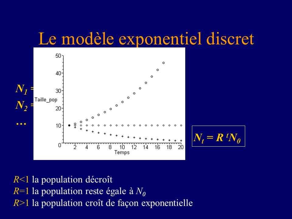 Le modèle exponentiel discret N t+1 = R N t N 1 = R N 0 N 2 = R N 1 = R 2 N 0 … donc N t = R t N 0 R<1 la population décroît R=1 la population reste é