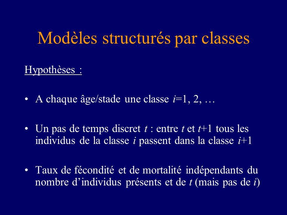 Modèles structurés par classes Hypothèses : A chaque âge/stade une classe i=1, 2, … Un pas de temps discret t : entre t et t+1 tous les individus de l