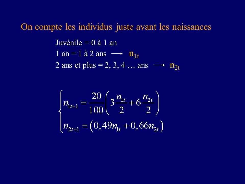 On compte les individus juste avant les naissances Juvénile = 0 à 1 an 1 an = 1 à 2 ans n 1t 2 ans et plus = 2, 3, 4 … ans n 2t