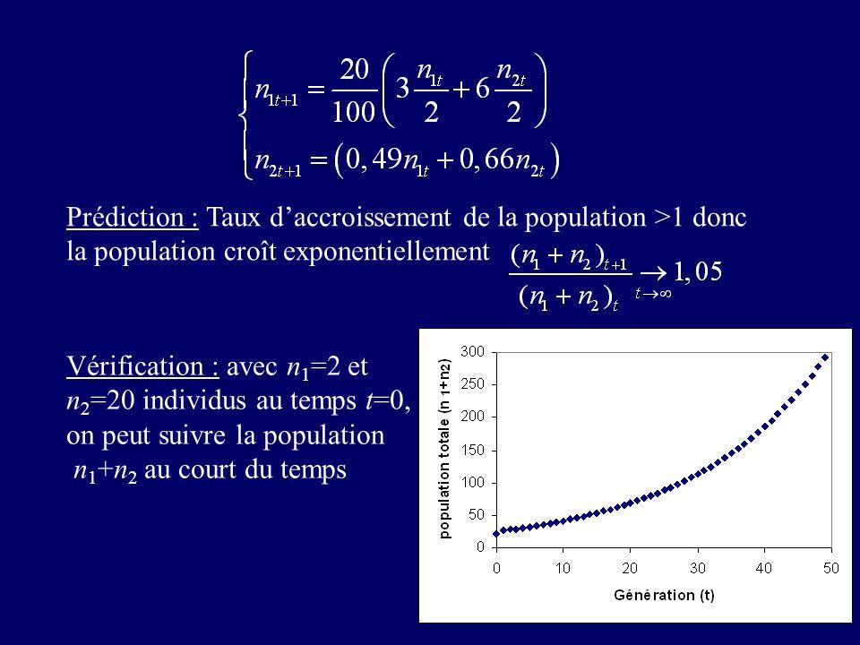 Vérification : avec n 1 =2 et n 2 =20 individus au temps t=0, on peut suivre la population n 1 +n 2 au court du temps Prédiction : Taux daccroissement