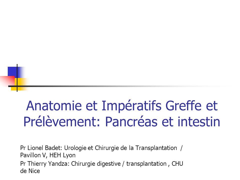 Anatomie et Impératifs Greffe et Prélèvement: Pancréas et intestin Pr Lionel Badet: Urologie et Chirurgie de la Transplantation / Pavillon V, HEH Lyon
