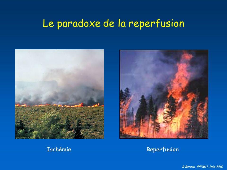 B Barrou, EFPMO Juin 2010 Le paradoxe de la reperfusion Ischémie Reperfusion