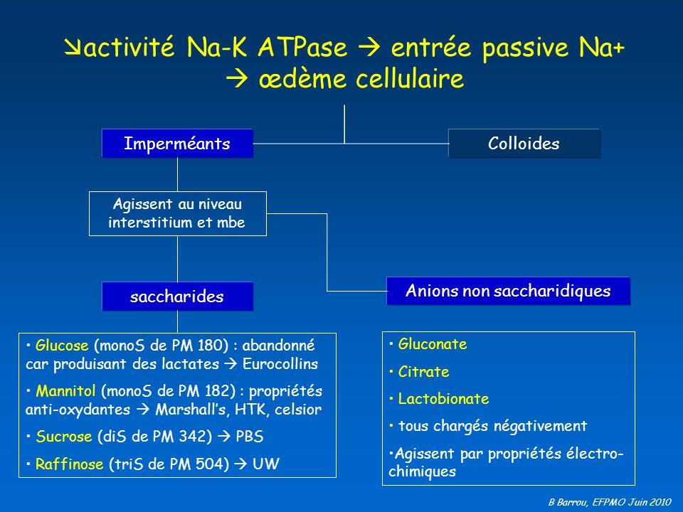 B Barrou, EFPMO Juin 2010 activité Na-K ATPase entrée passive Na+ œdème cellulaire ImperméantsColloides saccharides Glucose (monoS de PM 180) : abando